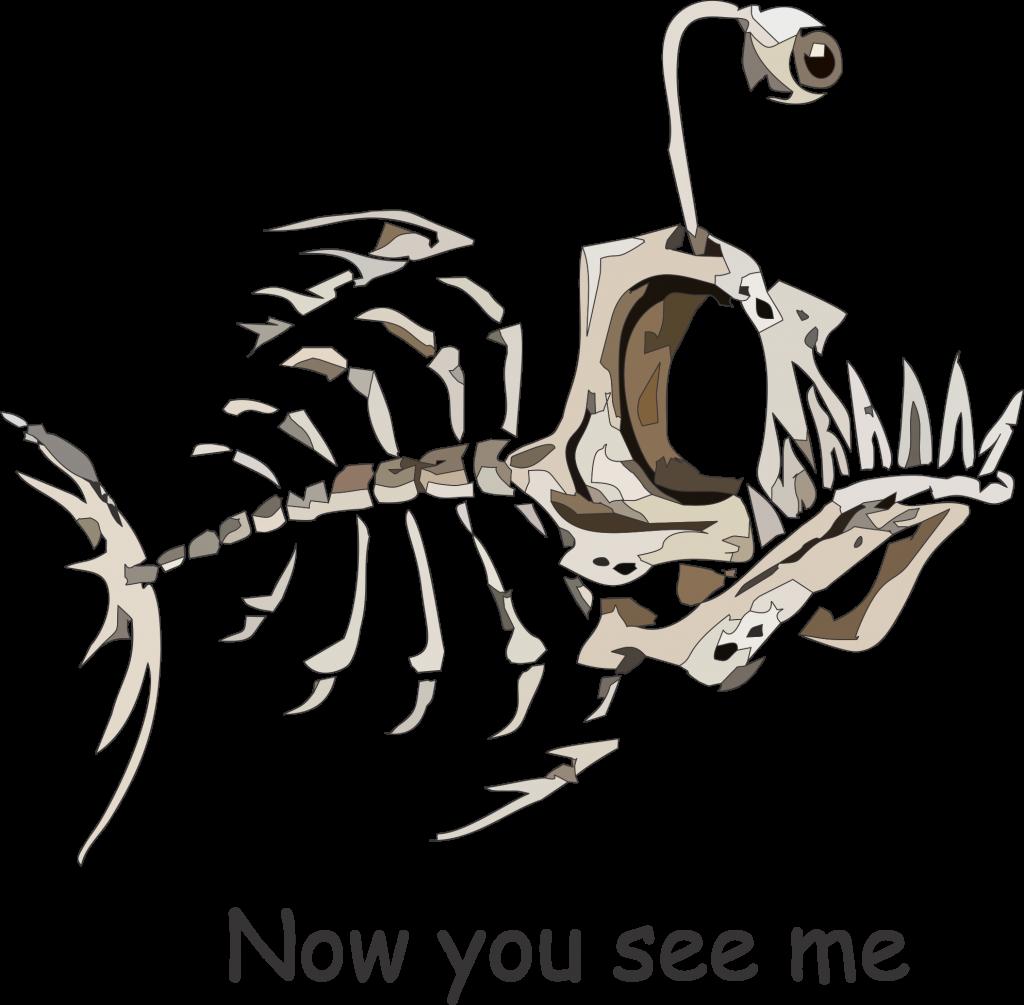 The Angler Fish